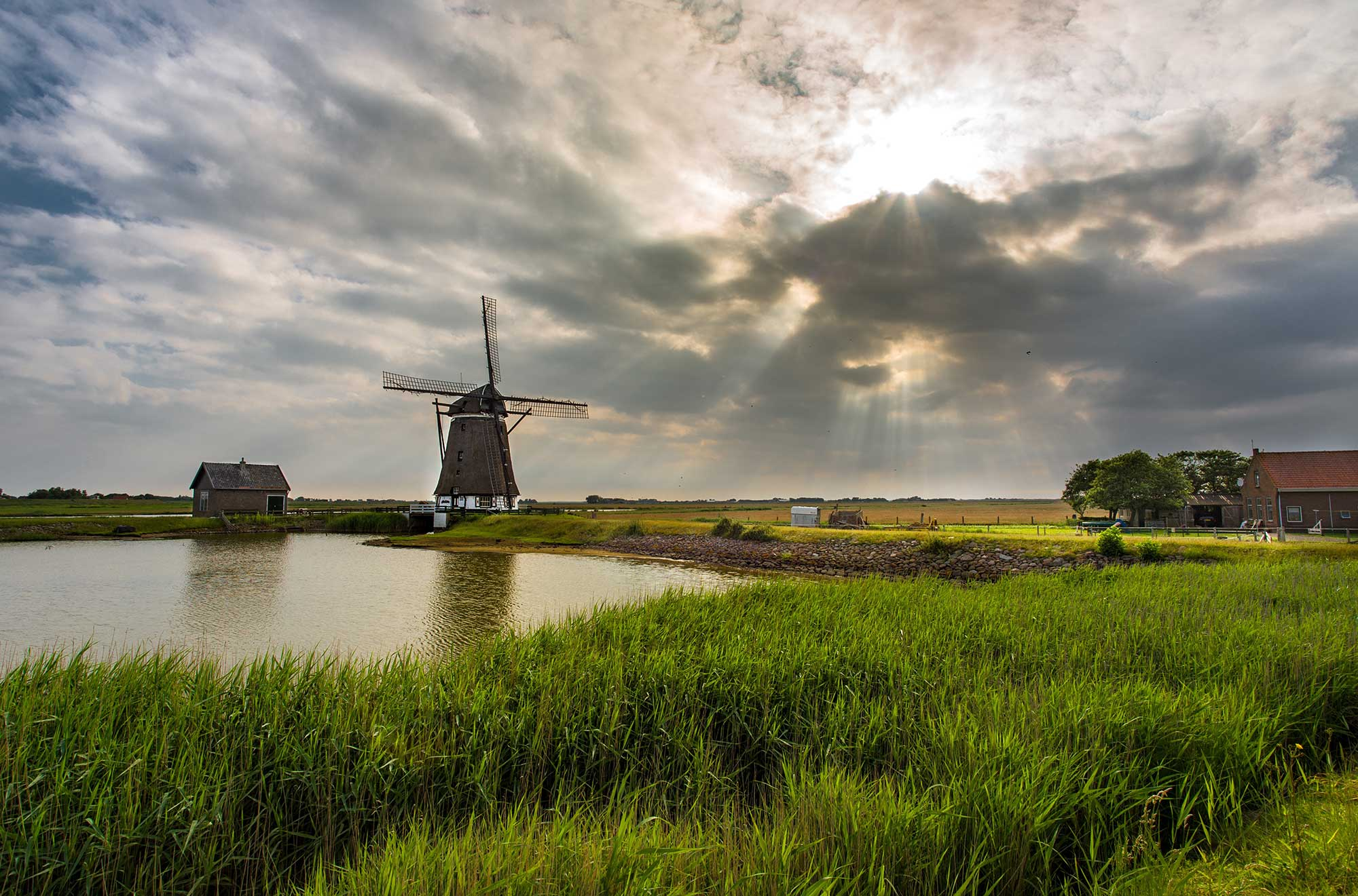 The Netherlands Green Ecology and Design Tour
